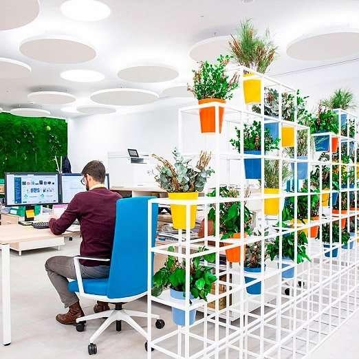 oficina-con-plantas-incrementa-bienestar-de-trabajadores