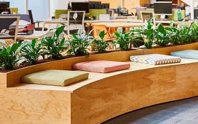 La naturaleza, clave para aumentar el bienestar y la creatividad en los espacios de trabajo