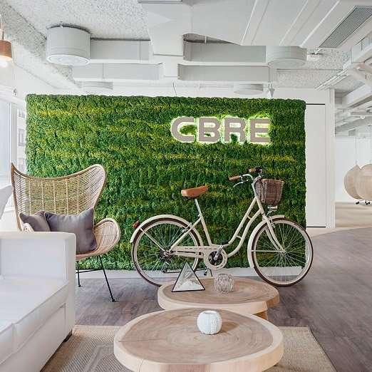 las plantas incrementan el bienestar y creatividad en los espacios de trabajo
